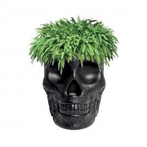 Qeeboo 70007BL Mexico planter black