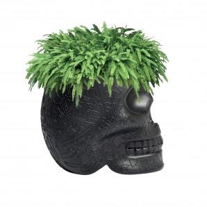 Qeeboo 70007BL Mexico planter black - фото 2