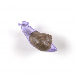 SELETTI 14631COL Snail Slow Coloured