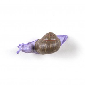 SELETTI 14631COL Snail Slow Coloured - фото 2