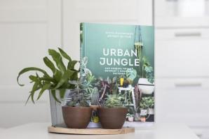 Urban Jungle. Как создать уютный интерьер  - фото 2